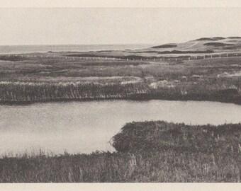 Reed Pond, Nantucket post card. Gardiner, black & white.