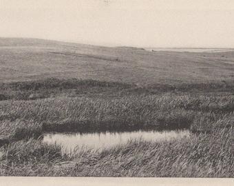 The Pond in the Hills, Nantucket post card. Gardiner, black & white.