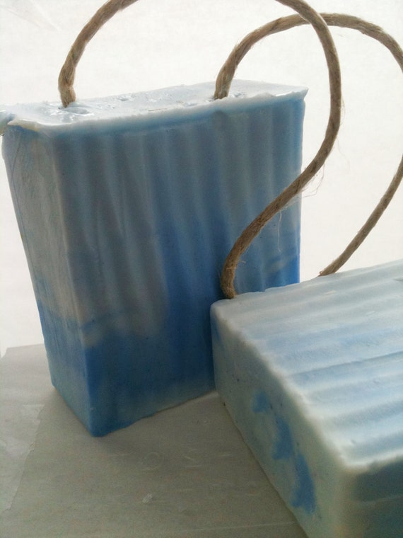 Blueberry Soap on a Rope - Stocking Filler - Christmas Gift - Gifts for Mom - Gifts for Grandma - Hanukkah Gifts - Hemp Soap - Secret Santa