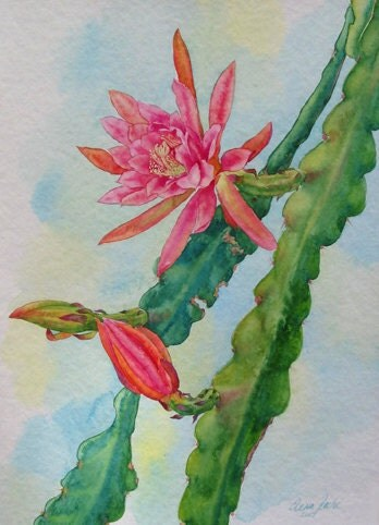 Christmas Cactus Painting Orchid Cactus Flower Painting
