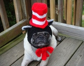 Cat in the Hat / Dog Hat / Cat Hat /  Made To Order