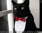 Cat Tuxedo - Choose Your Own Bow Tie (Solid Satins)