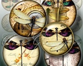 Dragonflies - Digital Collage Sheets CG-456 - 1.5 in, 1.25 in, 30mm, 1 in, 25mm circles - craft supplies, jewelry making, digital downloads