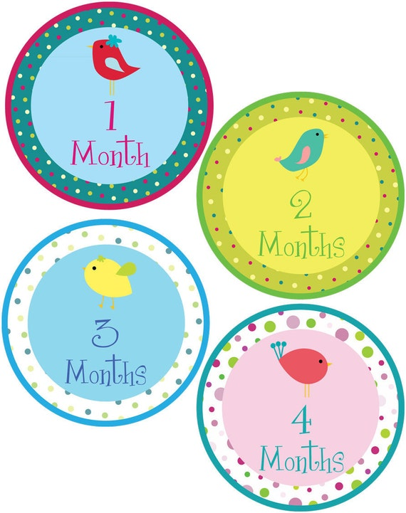 Polka Dot Bird Monthly Bodysuit Stickers - Great for Photo Albums - For a baby girl 1-12 months -  Perfect Baby Shower Gift