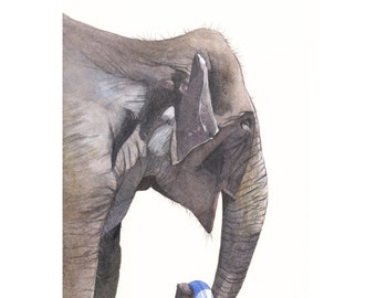 Elephant watercolor painting  E058 - print of watercolor painting - 5 by 7 print