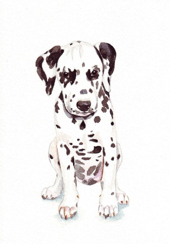 Dalmatian Puppy Painting - dog art-   print of watercolor painting 5 by 7 print
