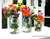 Mason Jar Flower Vases With Frog Lids - Set of 3