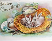Vintage Easter Bunny Rabbits and Chicks Victorian Embossed Postcard
