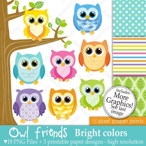Owl friends - BRIGHT COLORS - Digital paper and clip art set - Owl clipart