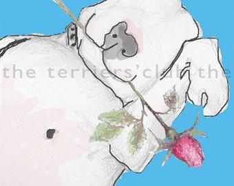 English Bull Terrier Art Card in blue with rosebud