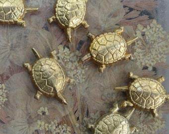 Tiny English Turtle Charm (3 pc)