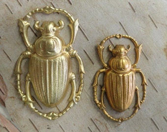 Large Rounded Scarab Beetle (1 pc)