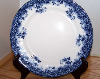 Collectible Canterbury Cobalt Blue Floral Rim Plate by Booths of England