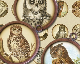 Simply Victorian Owls - Steampunk - 32mm Round Images - Digital Collage Sheet - Instant Download and Print