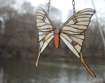 African Luna Moth Stained Glass Window Hanging