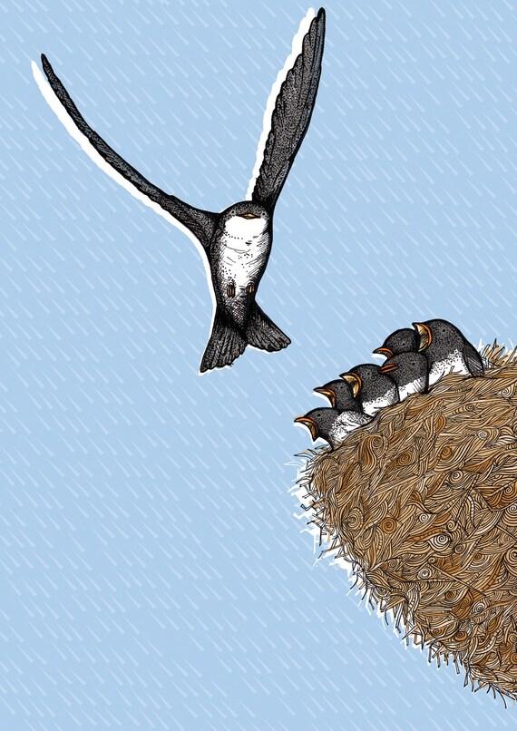 House Martin Nest Illustration (A4 Print)