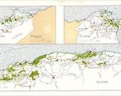 Vintage Wine Map of North Africa, Algeria, Morocco and Tunisia1969