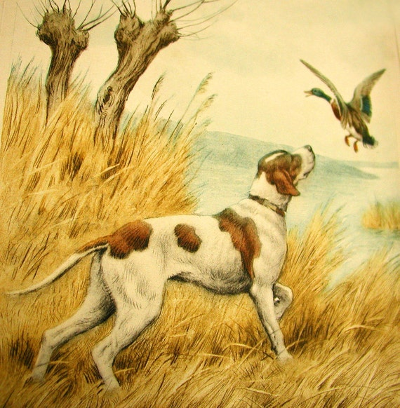 Hunting Dog and Duck, original aquatint etching signed and titled by artist Paul Wood, ca. 1935