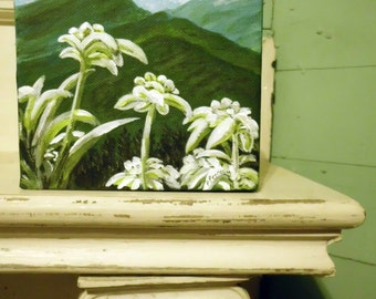 "Edelweiss- original painting,  6""x6"" acrylic painted on a wide edge canvas, edges are painted black."