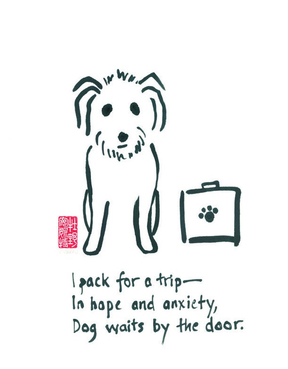 01-102. funny worried travel dog - 8x10 print