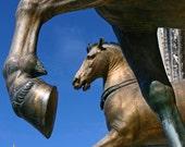 The Horses of Saint Mark - Signed photo 4 x 6 - Venice Italy blue bronze chatedral history quadriga chariot