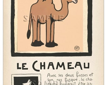 Camel - Le Chameau - Vintage French   Print - 11 x 15 inches