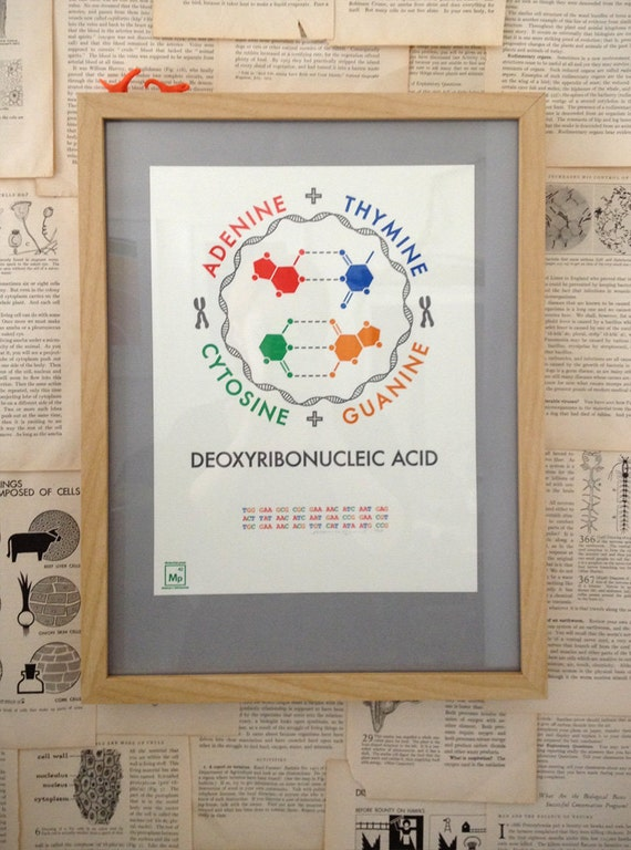 DNA letterpress poster -- science geekery