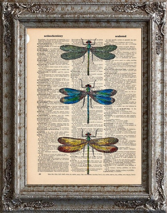 Dragonflies 2 on Vintage Upcycled Dictionary Art Print Book Art Print Recycled Repurposed Insects