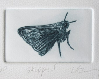 Drypoint butterfly print. Cute little Skipper. Hand printed Artist Proof.