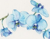 Blue Orchids One - Art Print of watercolor painting 8x10- open edition print- flower spring blue turquoise nature - Goosi