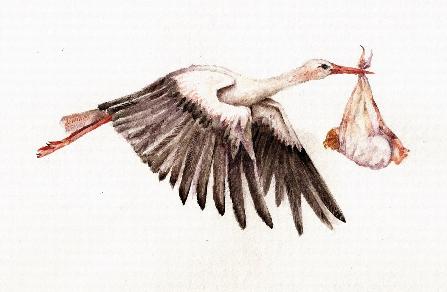 Baby On Bird Original Watercolor Of White Stork Carrying By Goosi