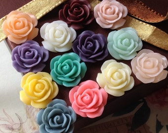 20 Pieces (10 Pairs) of 19 mm Rose Resin Flower Cabochons of Assorted Colors (.ag)