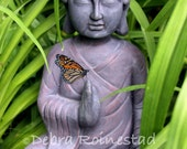 Buddha and Butterfly