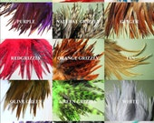 Custom 20 FEATHER Hair EXTENSION Kit, Pick Your Own, Salon Quality, Large and Unique Feather Collection