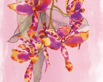 Orchids - High Quality Digital Print on matte heavyweight paper. A4 or 8x11,5 inches