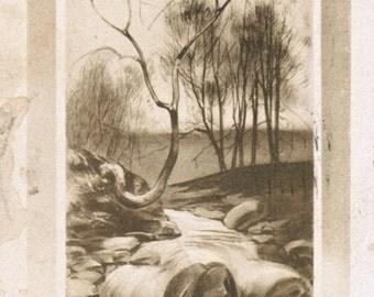 Art Nouveau Postcard Antique Woodland 1910s Montana