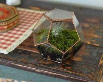 Universe Terrarium Kit, large dodecahedron glass terrarium with a hinged door -- stained glass -- copper or silver color -- eco friendly