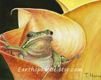 Frog painting 8x10 original oil painting,art & collectibles, painting, fine art earthspalette