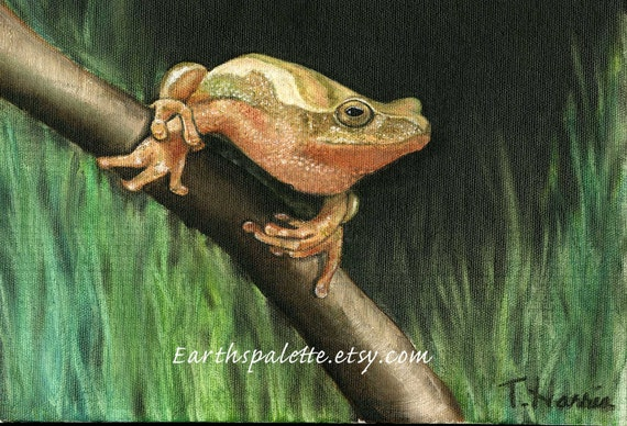 Tree frog paintings 8x10 original oil painting of amphibians wildlife paintings of frogs boys decor earthspalette