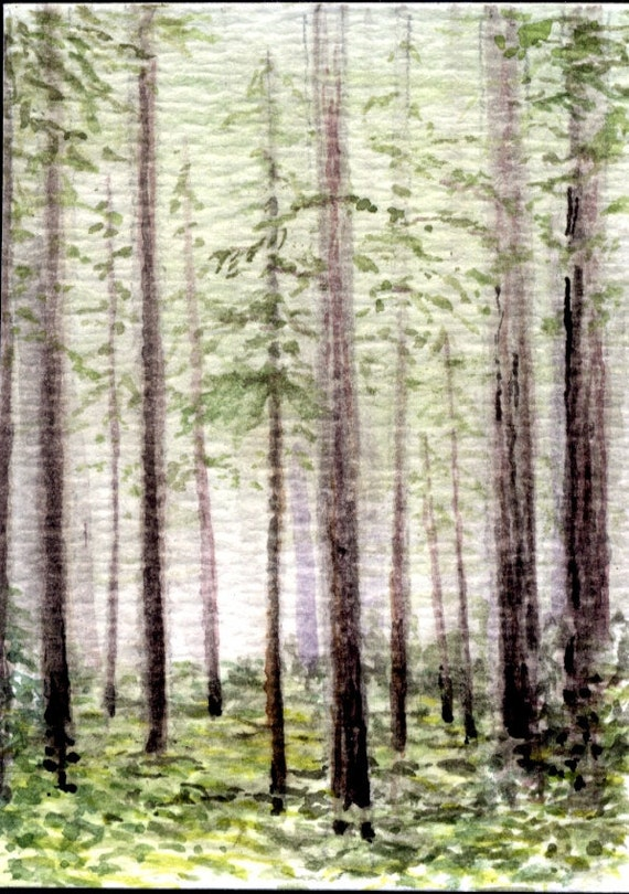 ACEO, Redwood Forest, 2.5x3.5, Collectible Original Watercolor Painting. Landscape, Scenic Earthspalette