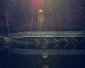 Evening Walk - Original Fine Art Photograph, FREE SHIPPING