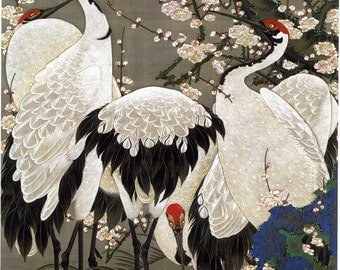 Japanese Art. Fine Art Reproduction.  Plum Blossoms and Cranes, c.1760 by Ito Jakuchu. Fine Art Print