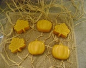 Candle Tarts, Candle Melts, Shaped Candles, Autumn Leaves, Pumpkins, Made to Order
