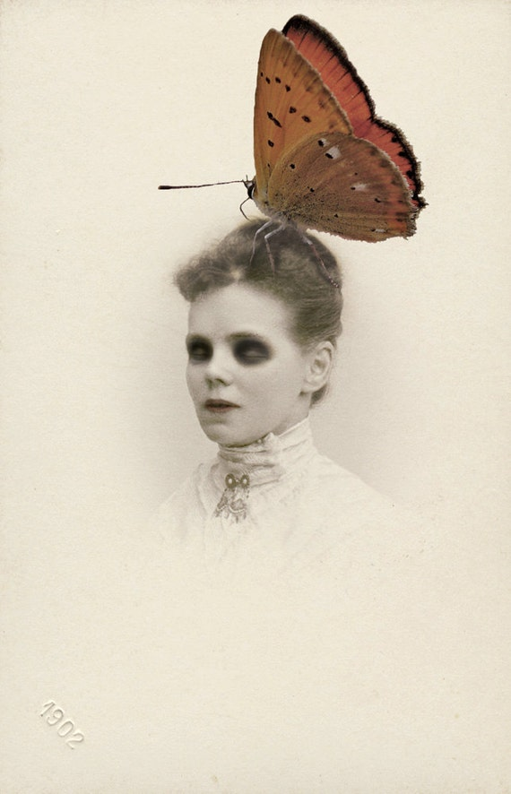 Madame Butterfly- photomanipulation