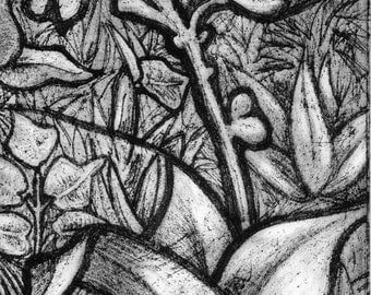 Soft ground drawing etching of plants, garden, leaves, undergrowth in a stained glass style, black and white
