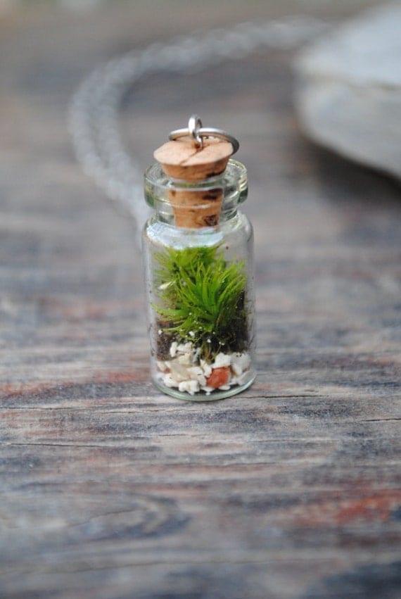 TINY TERRARIUM Necklace with live kentucky moss