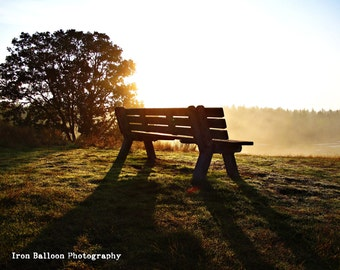 FOGGY SUNRISE MEDITATION Bench Art Photo Print