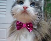 Pet Dog Cat Collar ACCESSORY glitter Bowtie