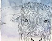 Highland Cow - Animal Illustration - Archival Art Print