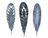 Occupy Feathers - Archival Print